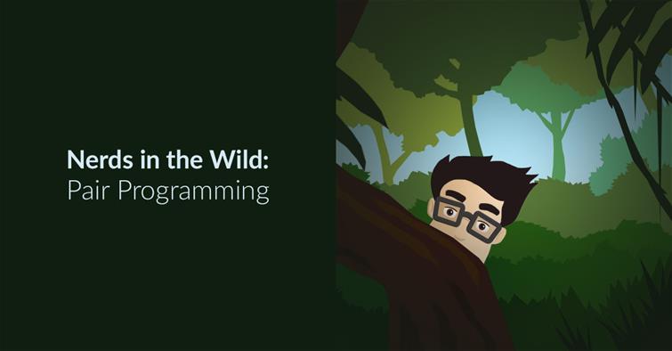 Nerds In The Wild – Pair Programming